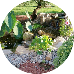 Shaylor's Ponds and Patios of Williamsport, PA performs natural ecological based pond installation
