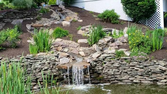 Shaylor's Ponds and Patios installs ponds that utilize natural processes to maintain cleanliness and water balance in Williamsport, PA